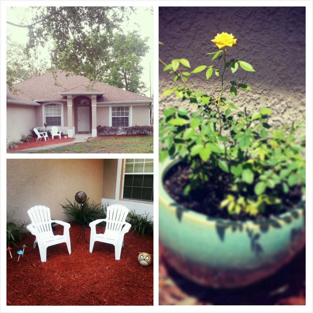 Grass, seating, mulch, yard art, and my beautiful little Daddy-birthday-bloom.